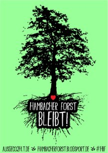 hambacher forst bleibt antikohle
