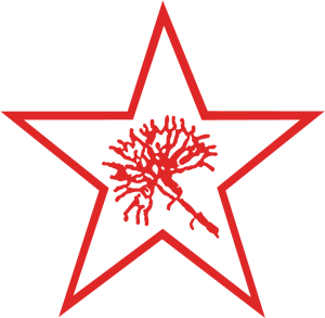 Kpf_logo LINKE